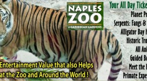 Carribean (Naples ) Zoo